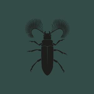 POZEK - Featherhorned Beetle EP
