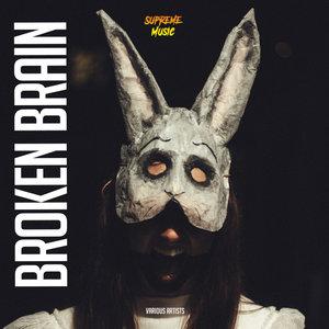 VARIOUS - Broken Brain
