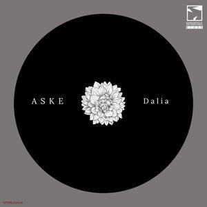 ASKE - Dalia