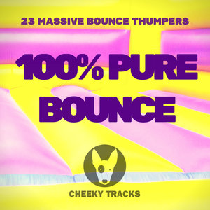 VARIOUS - 100% Pure Bounce