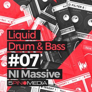5PIN MEDIA - Liquid Drum & Bass NI Massive (Sample Pack Massive Presets)