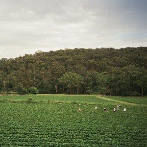 ALBRECHT LA'BROOY - Healesville