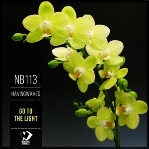 HAVINGWAVES - Go To The Light