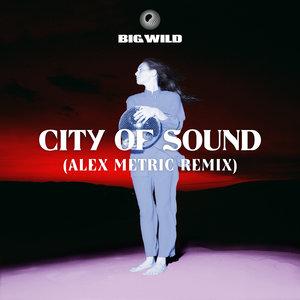 BIG WILD - City Of Sound