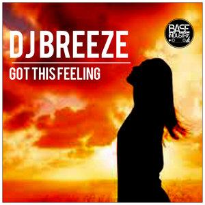 DJ BREEZE - Got This Feeling