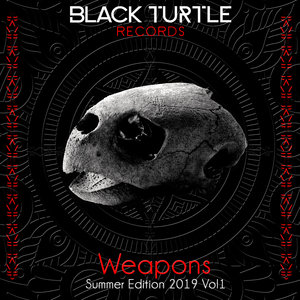 VARIOUS - Black Turtle Weapons Summer Edition 2019 Vol 1