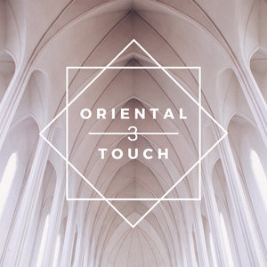 VARIOUS - Oriental Touch 3