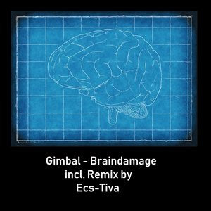 GIMBAL - Braindamage