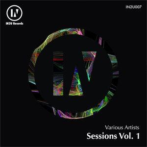 VARIOUS - IN2U Sessions Vol 1