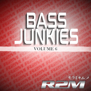 R2M/VARIOUS - Bass Junkies 6 (Explicit)