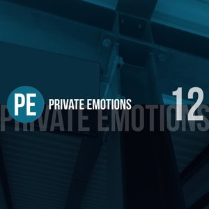 VARIOUS - Private Emotions Vol 12