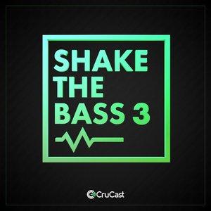 VARIOUS - Shake The Bass 3