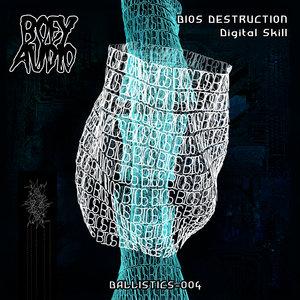 BIOS DESTRUCTION - Digital Skill