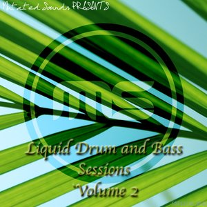 CHANGE OF PACE/XONEOUT/SYNIKAL - Liquid Drum & Bass Sessions (Vol 2)