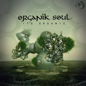 ORGANIK SOUL - Its' Organic