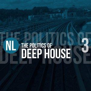 VARIOUS - The Politics Of Deep House Vol 3