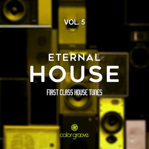VARIOUS - Eternal House Vol 5 (First Class House Tunes)