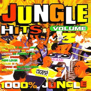 VARIOUS - Jungle Hits Vol 3