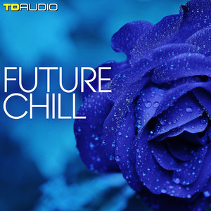 TD AUDIO - Future Chill (Sample Pack WAV/MIDI/Sylenth Presets)
