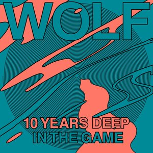 VARIOUS - Wolf 10 Years Deep In The Game