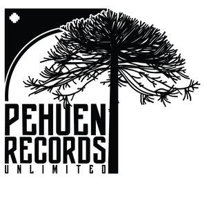 CHRISTIAN GREENHILL/DAS ORLANDO/MAURICIO SPENCER/PEDRO CAMPOS/SAMARELLI/PIRERR - Pehuen Records Selecta 1