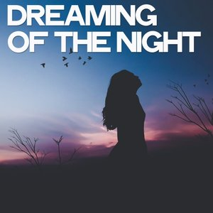 VARIOUS - Dreaming Of The Night (25 Lounge Criminals Traxx)