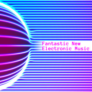 VARIOUS - Fantastic New Electronic Music