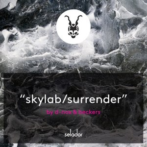 D-NOX & BECKERS - Skylab/Surrender
