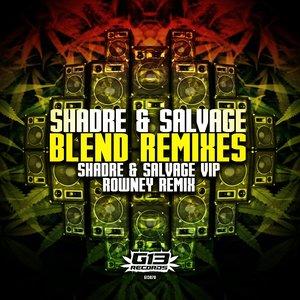 SHADRE & SALVAGE - Blend Remixes
