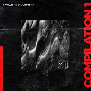 VARIOUS - 1 Year Of Project 13. Compilation 1
