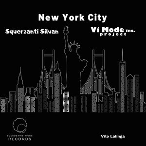 Vito Lalinga (vi Mode Inc Project) - New York City