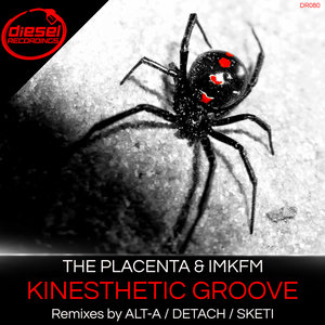 THE PLACENTA/IMKFM - Kinesthetic Groove
