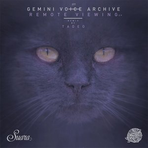 GEMINI VOICE ARCHIVE - Remote Viewing EP