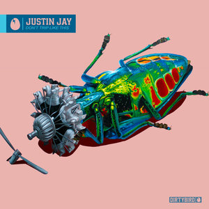 JUSTIN JAY - Don't Trip Like This