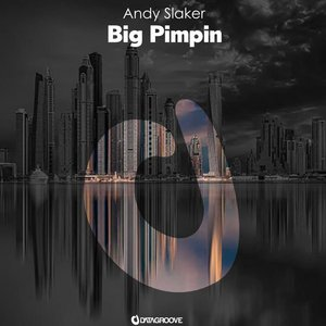ANDY SLAKER - Big Pimpin