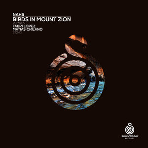 NAHS - Birds In Mount Zion