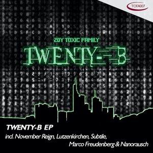 NOVEMBER REIGN/LUTZENKIRCHEN/SUBTILE/MARCO FREUDENBERG/NANORAUSCH - Twenty-B