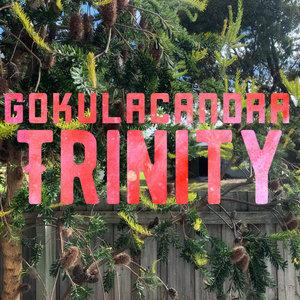 GOKULACANDRA - Trinity