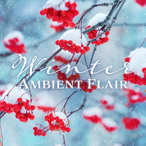 VARIOUS - Winter Ambient Flair