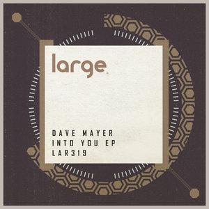 DAVE MAYER - Into You EP