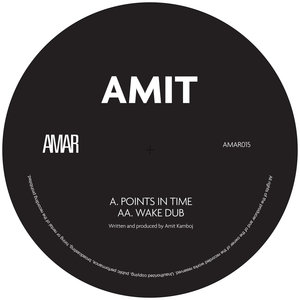 AMIT - Points In Time/Wake Dub