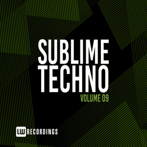 VARIOUS - Sublime Techno Vol 09