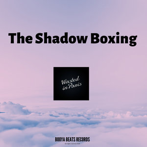 WASTED IN PARIS - The Shadow Boxing