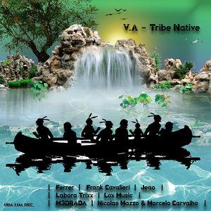 VARIOUS - Tribe Native