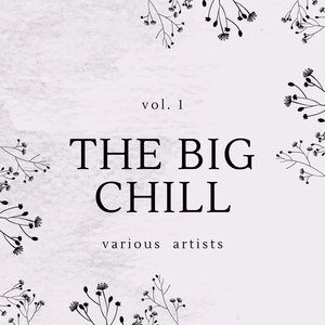 VARIOUS - The Big Chill Vol 1