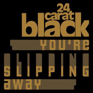 24-CARAT BLACK/VICKI GRAY - You're Slipping Away