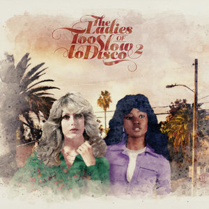 VARIOUS - The Ladies Of Too Slow To Disco Vol 2