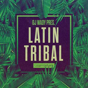 DJ WADY - Latin Tribal (Sample Pack WAV/APPLE/LIVE/REASON)