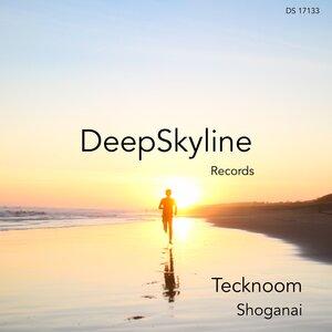 TECKNOOM - Shoganai