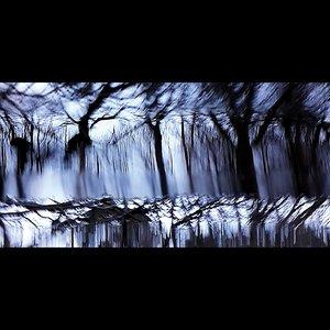 JOACHIM SPIETH - Tides
